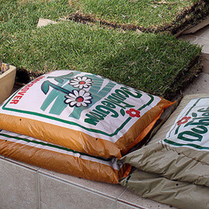 Lawn-Renovation-Seed